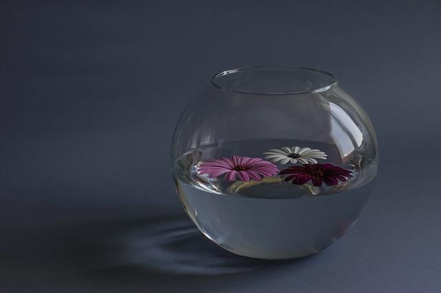 Das Glas ist halbvoll