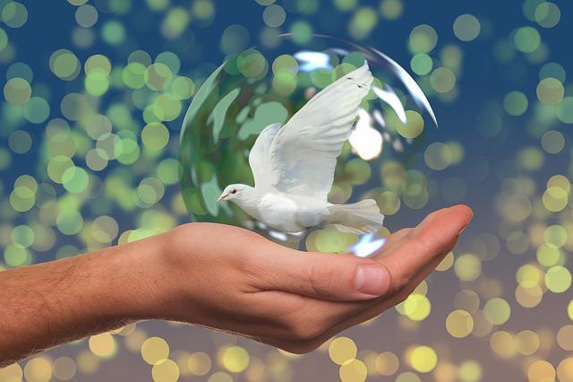 Friedensdividende
